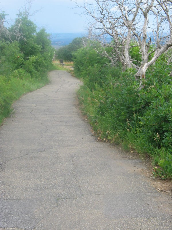Path going down from fire lookout to parking lot....