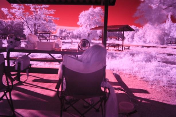 Shot through the infrared lens.