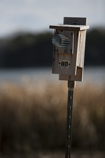 One of many bird houses around the park.