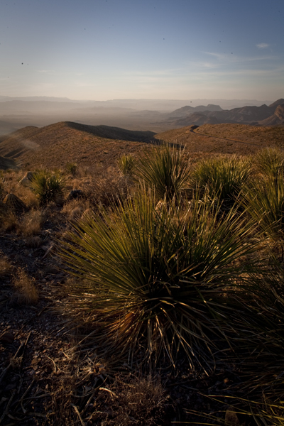 sunset sotol vista Big Bend National Park