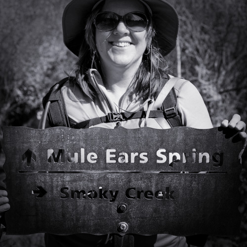 Mule Ears Spring Trail Sign