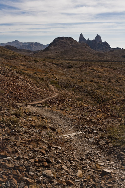 Mule Ears Trail Big Bend NP